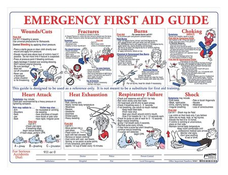 First Aid Training Poster, 18 x 24In, ENG
