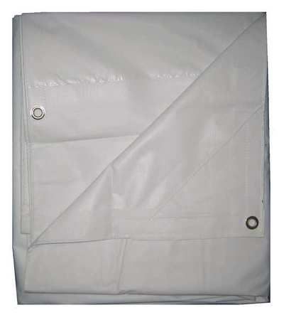 Tarp, Flame Resistant, Polyeth, 10x20Ft