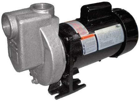 Pump,  Centrifugal,  SS,  1/2 HP, 1 PH