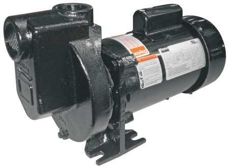 Pump,  Centrifugal,  CI,  1/3 HP, 1 PH