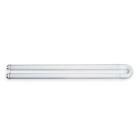 U-Shaped Fluorescent Light Bulbs
