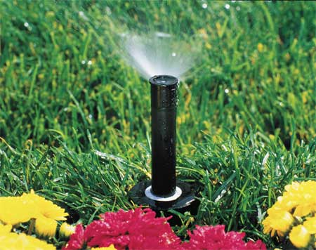 Spray Head for Shrubs, Plastic, 6 In. H