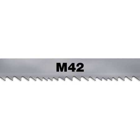 Band Saw Blade, M-42 Bimetal, 1 In. W