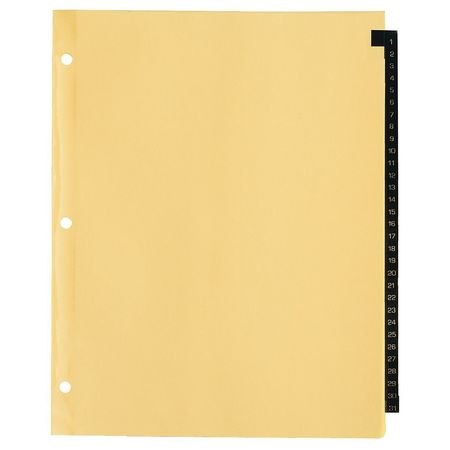Index Divider, Numbered, 31 Tabs, Leather