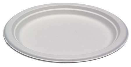 "Paper, Plate, Round, 10-1/4"", White, PK500"