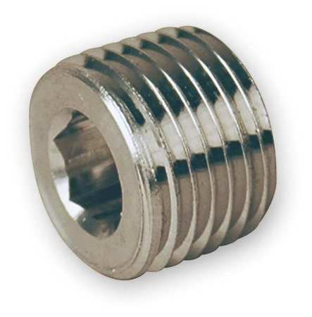 "1/4"" MNPT SS Hollow Hex Plug"