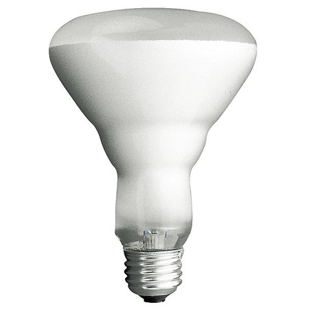Incandescent Floodlight, BR40, 120W