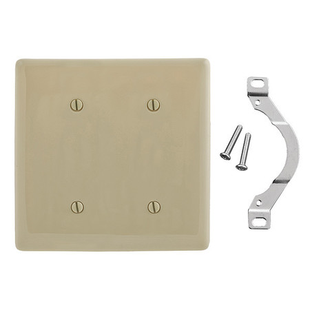 Blank Strap Mount Plate, 2 Gang, Ivory
