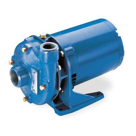 Cast Iron 1 HP Centrifugal Pump 208-230/460V