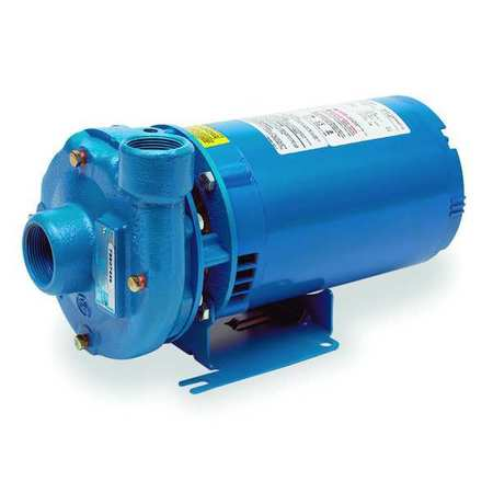 Cast Iron 1/3 HP Centrifugal Pump 115/230V