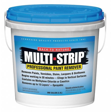 Paint and Varnish Remover, 1 gal.