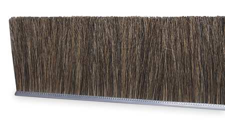 Strip Brush, 72 In L, Overall Trim 2 In