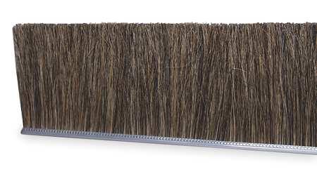 Strip Brush, 72 In L, Overall Trim 3 In