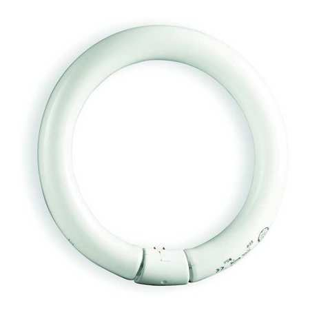 GE LIGHTING 20W,  T9 Circular Fluorescent Light Bulb,  Min. Qty 12