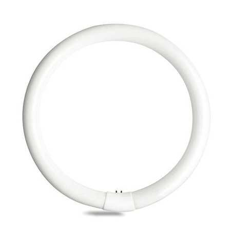 GE LIGHTING 40W,  T9 Circular Fluorescent Light Bulb