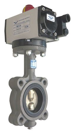 Butterfly Valve, Dbl Acting, Iron, 2 In.