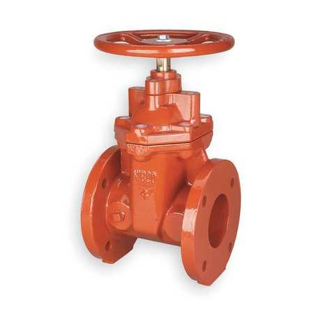 Gate Valve, Class 125, 6 In., Flange