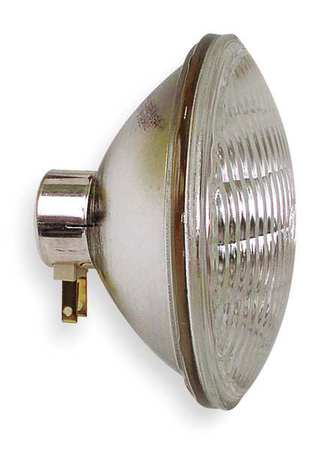 Incand Sealed Beam Floodlight, PAR46, 200W