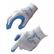 Blue Disposable Gloves, L, 12PK